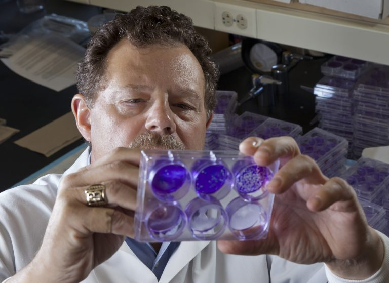 Dr. Curtis Brandt in lab
